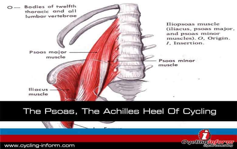 The Psoas, the achilles heel of cycling
